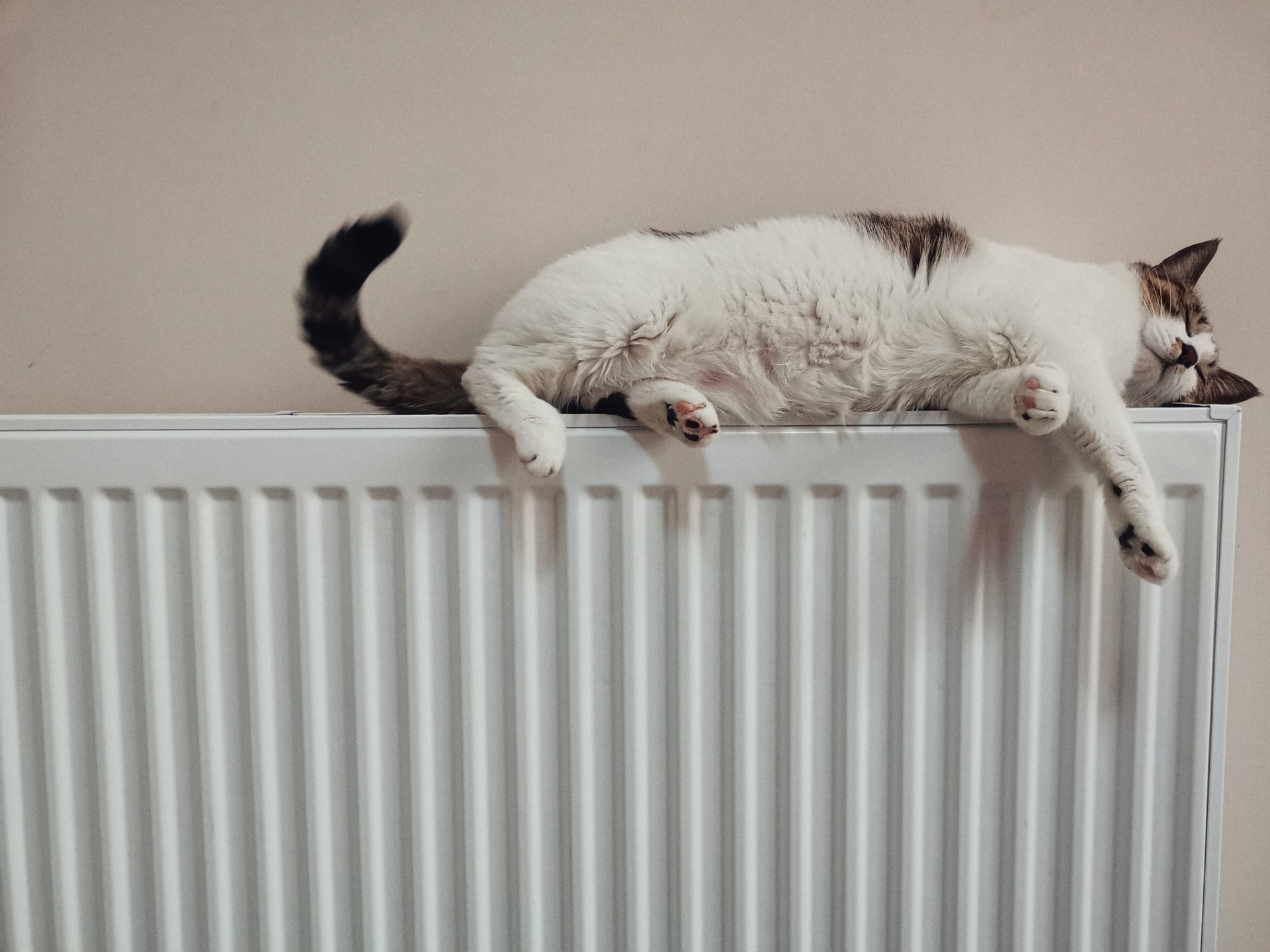 8 Ways Homeowners in South Devon Can Reduce Their Heating Costs